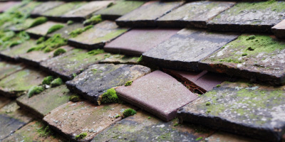 Marchington roof repair costs